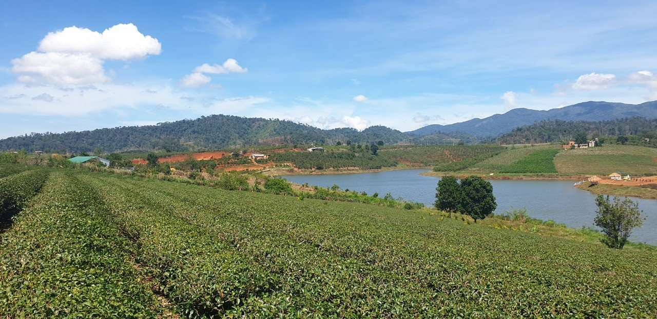 Bất động sản Lâm Đồng - Dự án Phúc Thọ Village - Hình ảnh thực tế