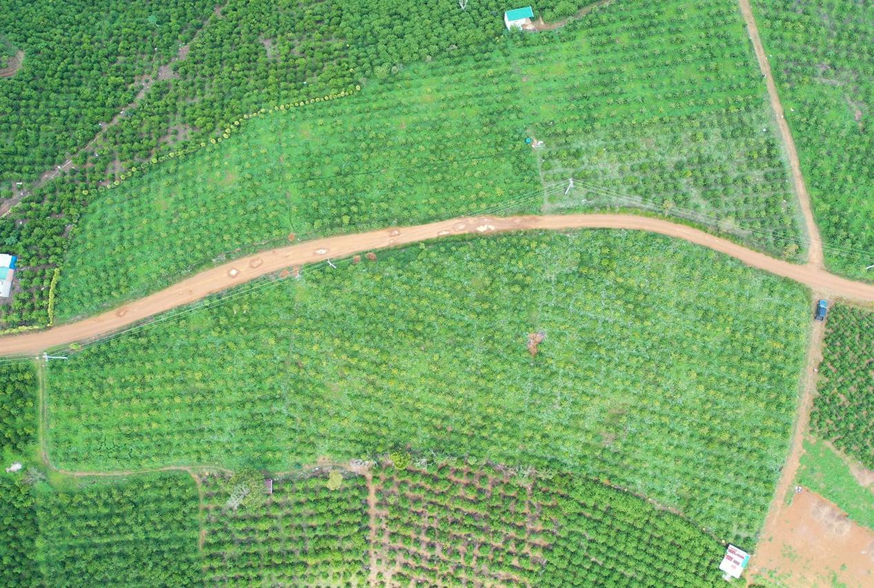 Bất động sản Lâm Đồng - Chuỗi Dự án Green Life 1 - Hình ảnh thực tế