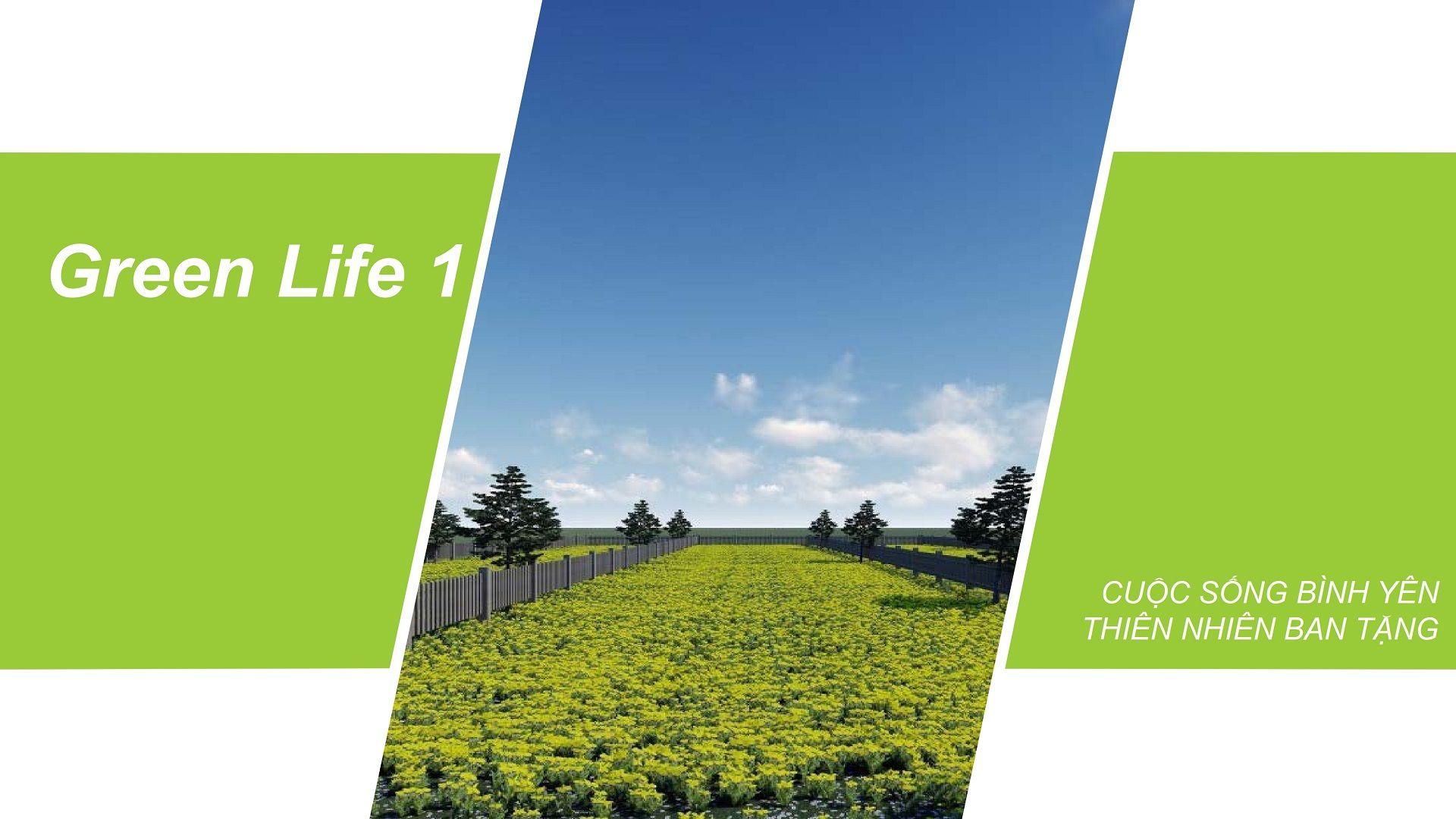 Giới thiệu sản phẩm - Green Life 1