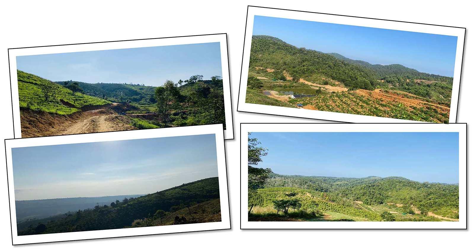 Bất động sản Lâm Đồng - Dự án Lộc Tân Farm 38 - Hình ảnh thực tế