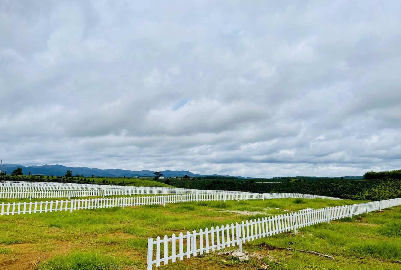 Bất động sản Lâm Đồng - Chuỗi Dự án Green Life 1 - Hình thực tế