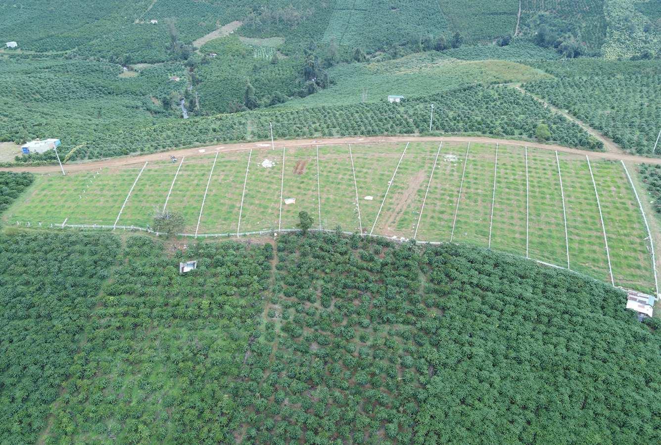 Bất động sản Lâm Đồng - Chuỗi Dự án Green Life 1 - Hình thực tế 1
