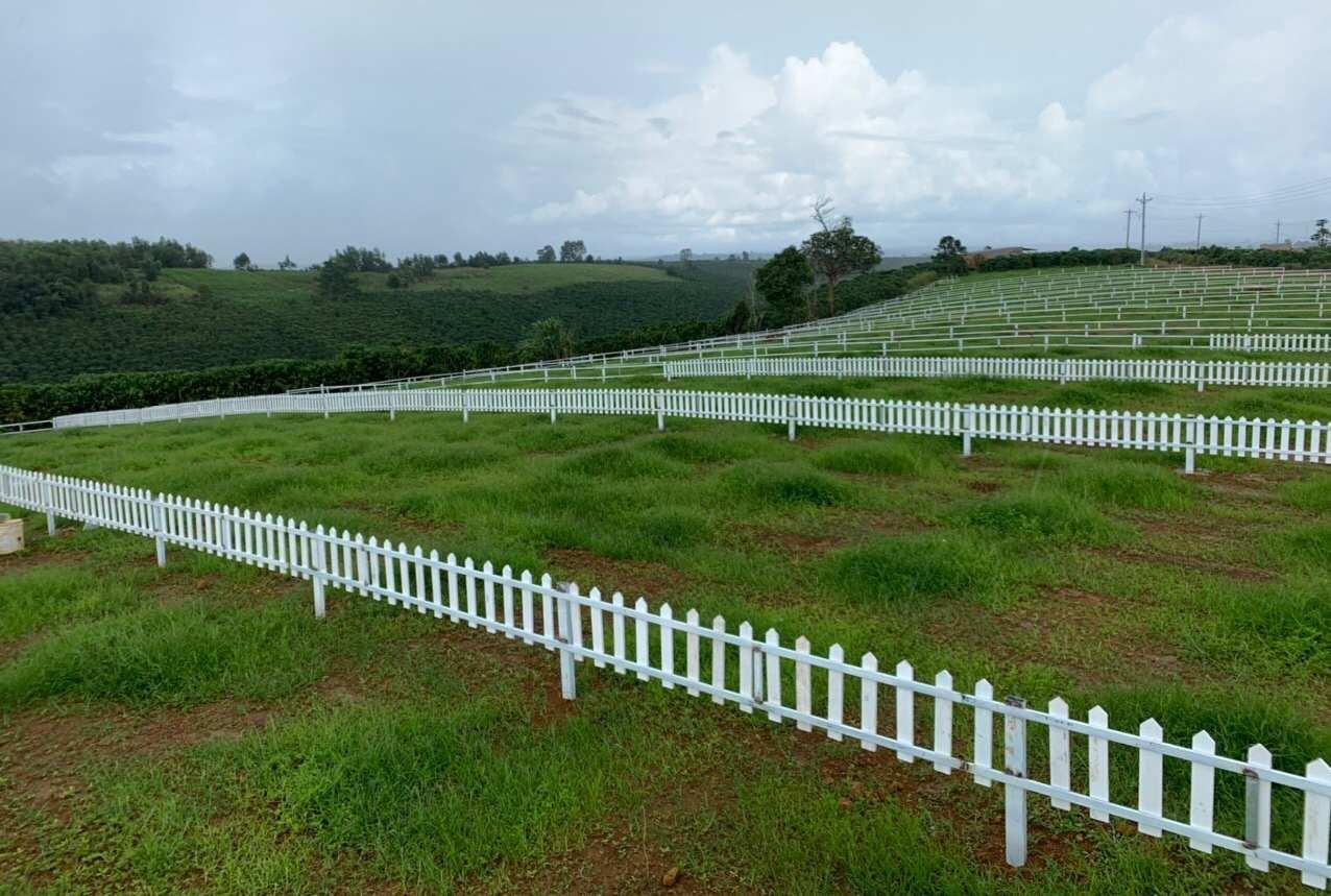 Bất động sản Lâm Đồng - Chuỗi Dự án Green Life 1 - Hình thực tế 2